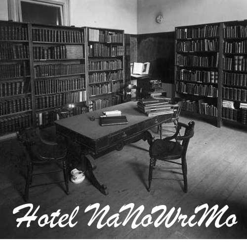 Hotel Nanowrim Album Cover